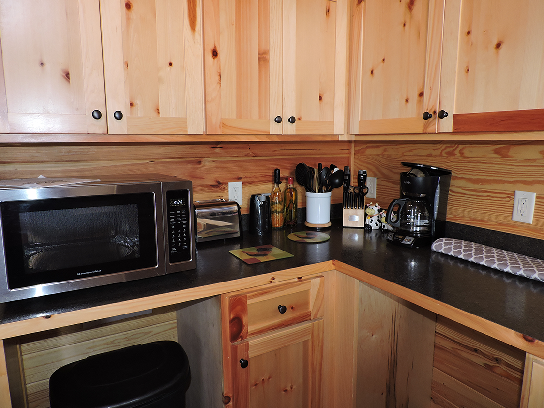 cabin1kitchenammenities